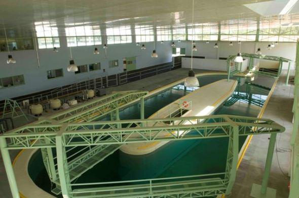 Centro de Rehabilitación y Hospital Equino Kawell