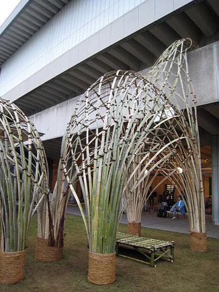 Un hermoso zoológico de bambú / Bow Wow