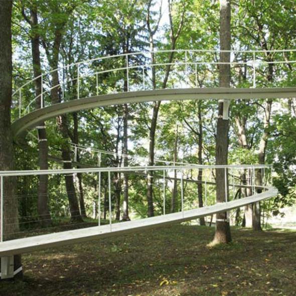 Un camino en el bosque / Tetsuo Kondo Architects