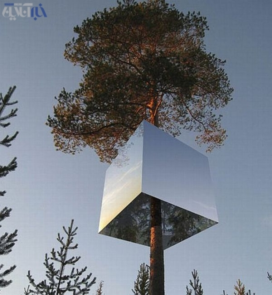 Tree hotel by Tham and Videgård Hansson Arkitekter