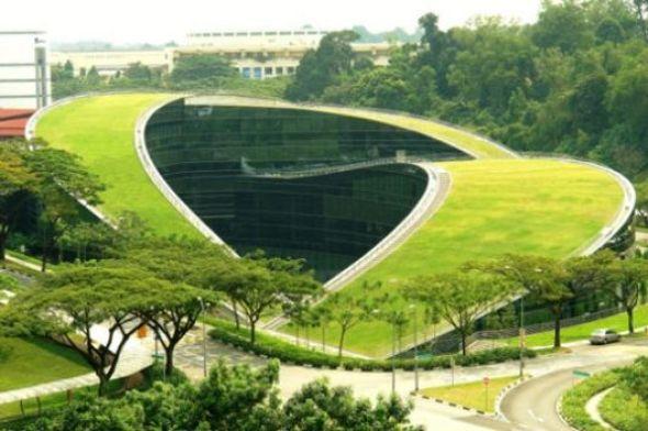 El Impacto Positivo de la Arquitectura Verde
