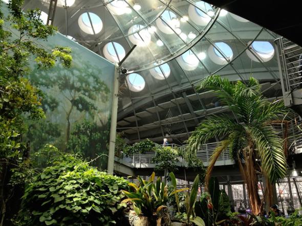 El museo más verde del mundo