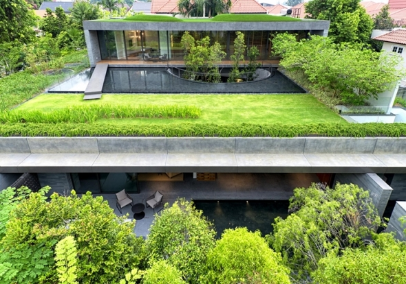 Vegetación integrada