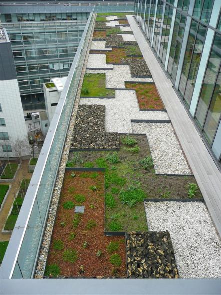 Extraordinarios ejemplos de techos verdes