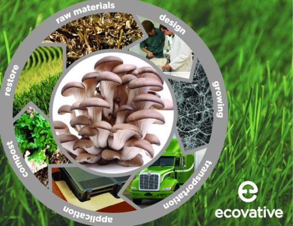 Aislante en base de hongos y desechos agrícolas