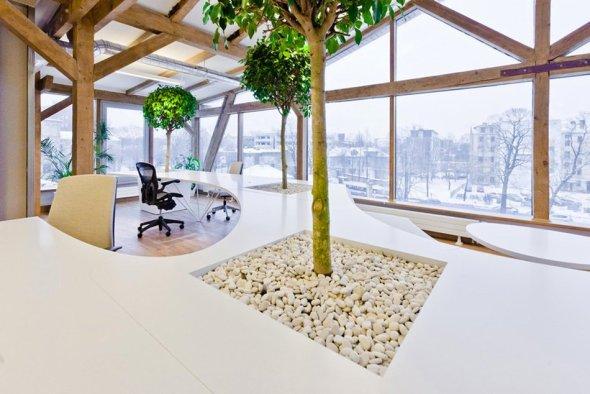 Pasos para tener una oficina sustentable