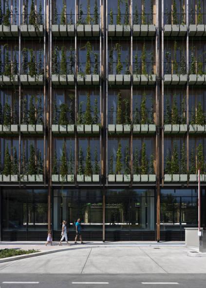 Las pieles verdes de Renzo Piano