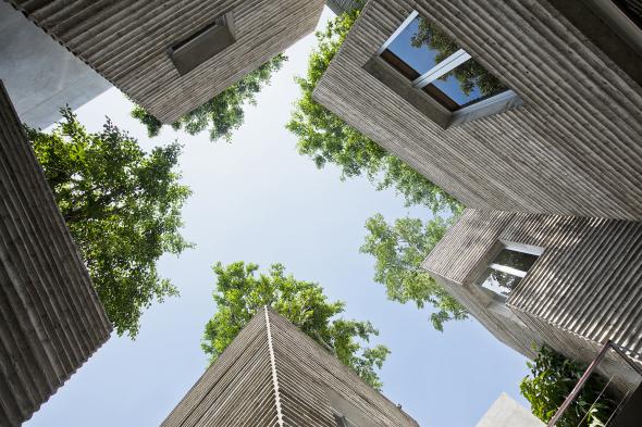 Casa para árboles