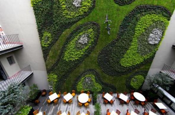 Muros verdes para la ciudad de México