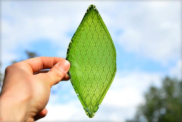 Hoja sintética usada en fachadas es capaz de crear oxígeno