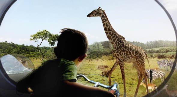 Zootopia. Propuesta de zoológico sin jaulas
