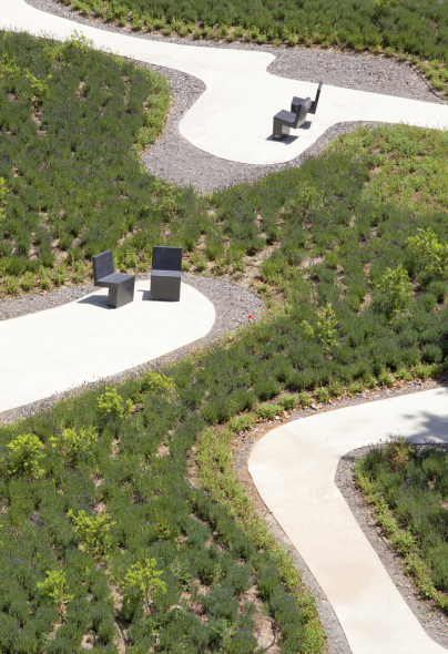 Restauración de jardín minimalista