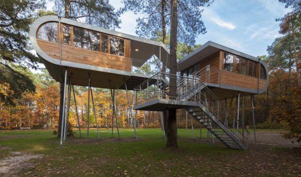 El arquitecto que construye casas del árbol