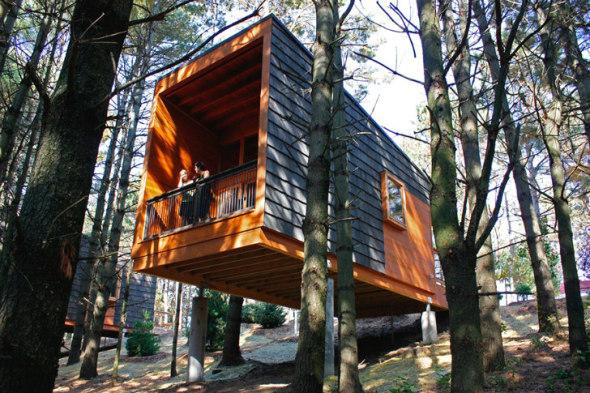 Cabañas elevadas para acampar