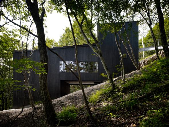Casa en pendiente de un bosque