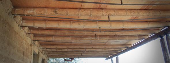 Diseñan losas con vigas de bambú. Resistentes como las de acero y más económicas