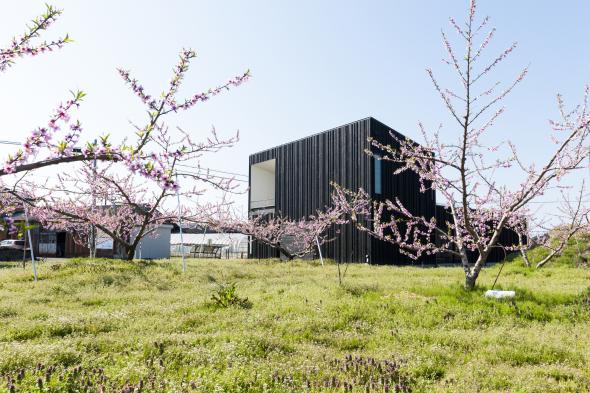Yobitsugi como un método de diseño en casa japonesa