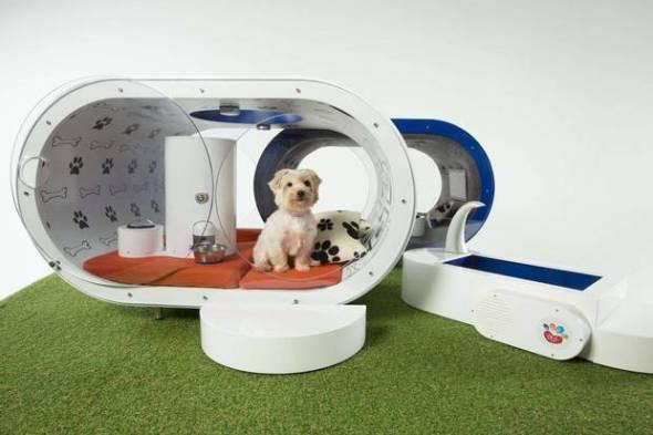 Es esta la caseta de perros más lujosa del mundo
