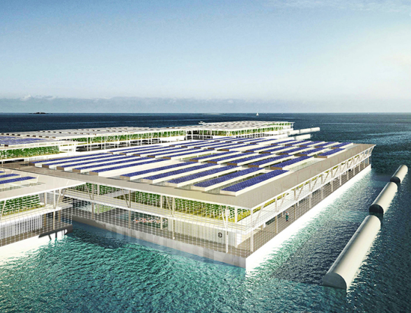Podrían las granjas flotantes de energía solar proporcionarle suficiente comida a todo el mundo