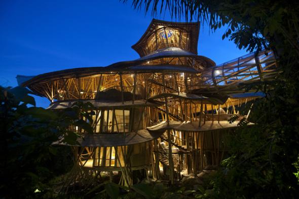 Vivienda del árbol de bambú