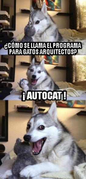 Humor en la arquitectura. Programa para gatos arquitectos