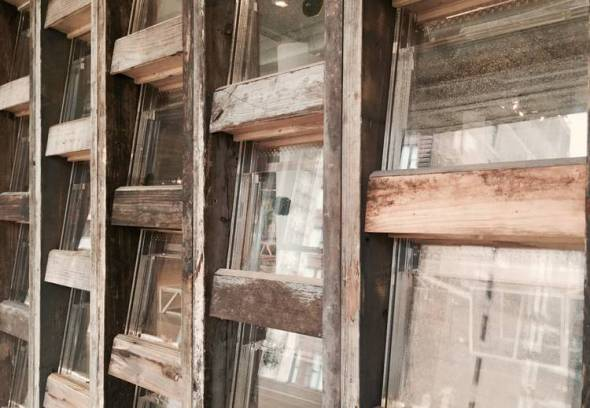 Arquitectura y biología se conjugan y dan como resultado muros vivientes