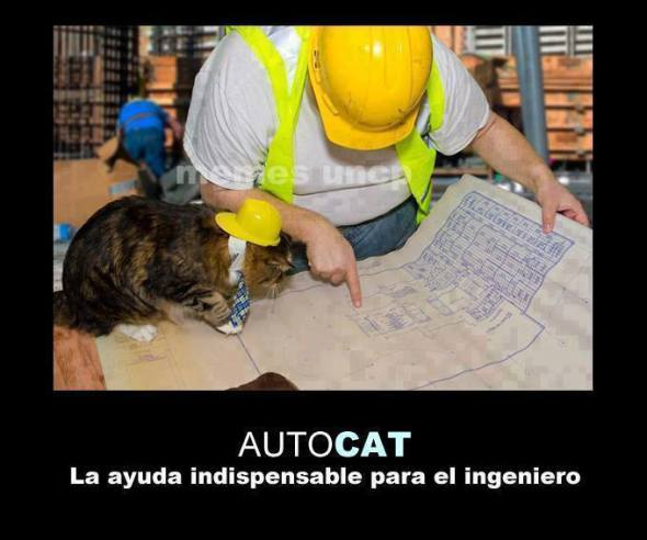 Humor en la arquitectura ¿Ya sabes usar el AutoCAT?