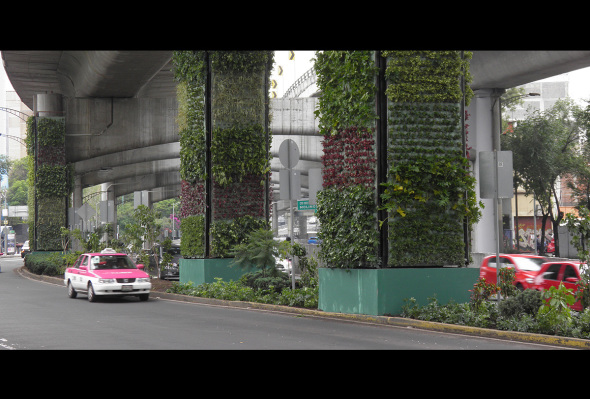 VIDEO: Las columnas verdes del Periférico ¿realmente tienen beneficios ecológicos?